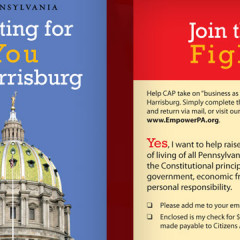 Citizens Alliance of Pennsylvania (CAP) Folding Palm Card/Brochure