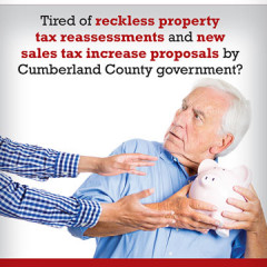 "Eichelberger Schin ""Tired of Taxes"" Mailer"